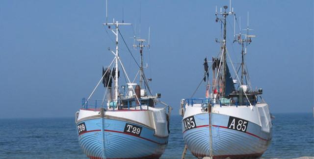 Fisk på grillen – Opskrift på fisk i fad