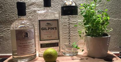 Gin og opskrifter på drinks med gin