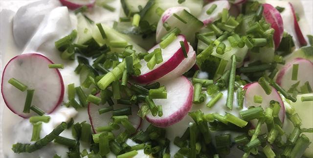 Sommer kartoffelsalat med radiser, rygeost og purløg