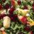 Kålsalat med tyttebær
