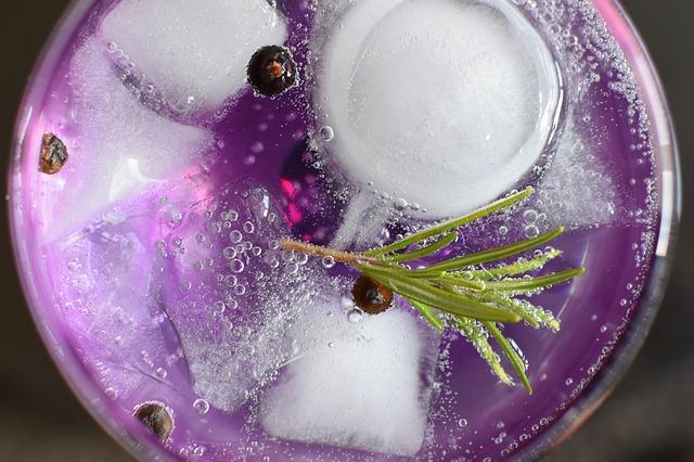 Gin / Tonic med rosmarin og peber